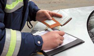 В какой срок нужно уплатить штрафы?